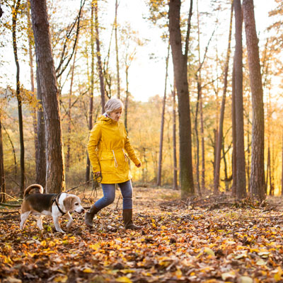 Fall Foliage is a Must-Add to Your Bucket List